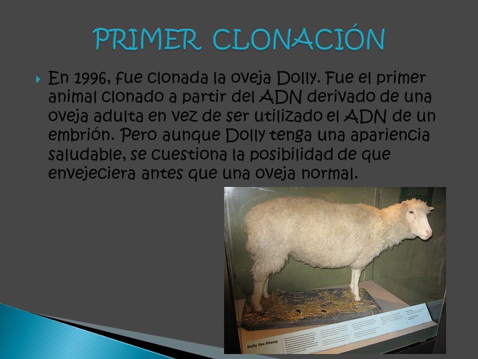 En 1996, fue clonada la oveja Dolly. Fue el primer animal clonado a partir del ADN derivado de una oveja adulta en vez de ser utilizado el ADN de un e