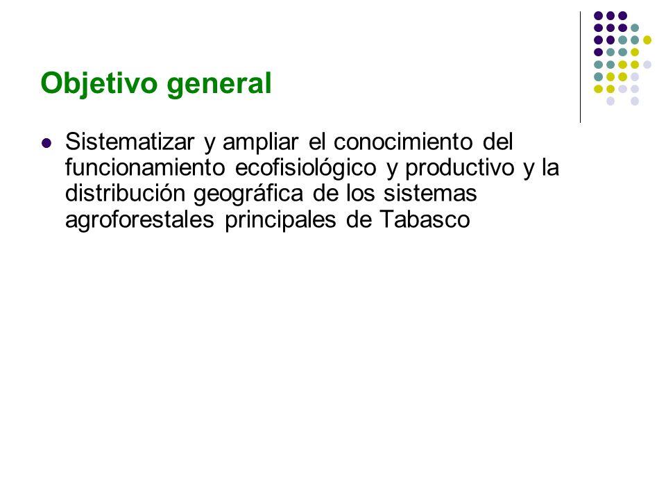 Objetivo general Sistematizar y ampliar el conocimiento del funcionamiento ecofisiológico y productivo y la distribución geográfica de los sistemas agroforestales principales de Tabasco