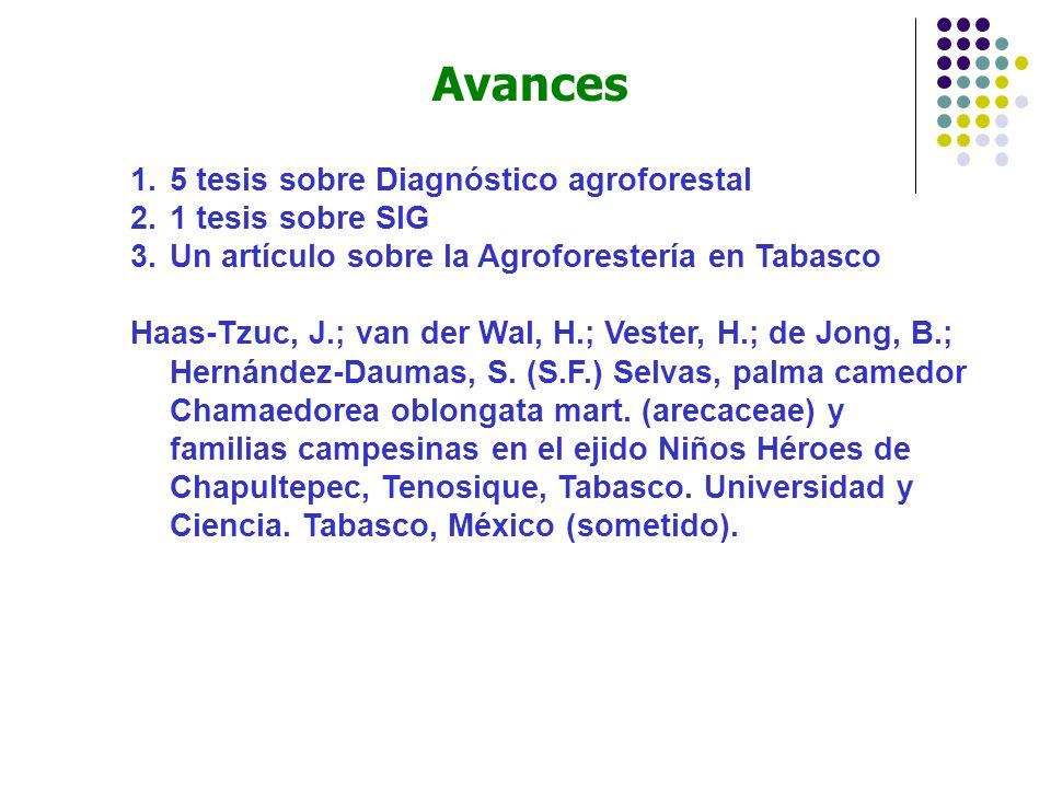1.5 tesis sobre Diagnóstico agroforestal 2.1 tesis sobre SIG 3.Un artículo sobre la Agroforestería en Tabasco Haas-Tzuc, J.; van der Wal, H.; Vester, H.; de Jong, B.; Hernández-Daumas, S.