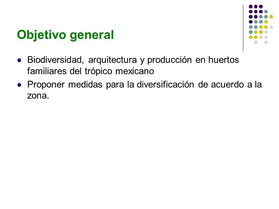 Objetivo general Biodiversidad, arquitectura y producción en huertos familiares del trópico mexicano Proponer medidas para la diversificación de acuerdo a la zona.