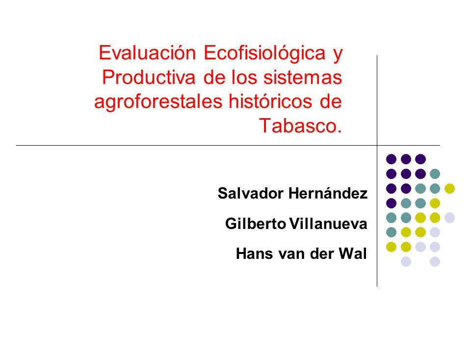 Evaluación Ecofisiológica y Productiva de los sistemas agroforestales históricos de Tabasco. Salvador Hernández Gilberto Villanueva Hans van der Wal