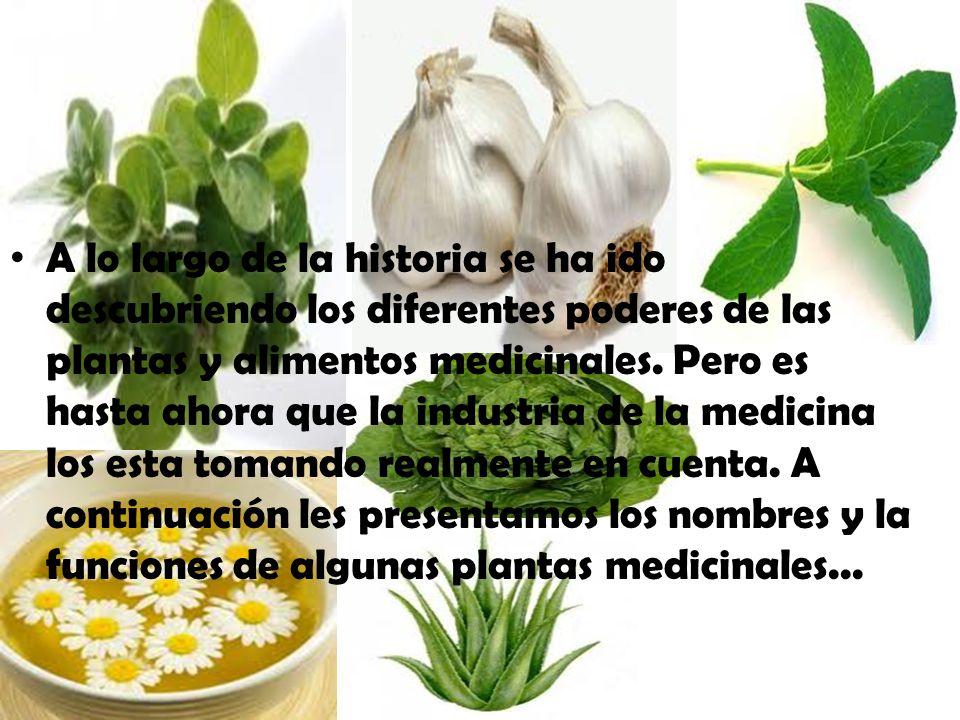 lo A lo largo de la historia se ha ido descubriendo los diferentes poderes de las plantas y alimentos medicinales. Pero es hasta ahora que la industri
