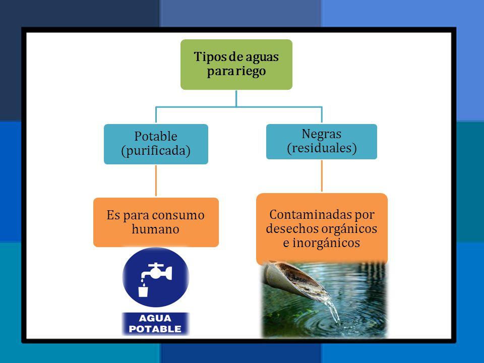 Tipos de aguas para riego Potable (purificada) Es para consumo humano Negras (residuales) Contaminadas por desechos orgánicos e inorgánicos