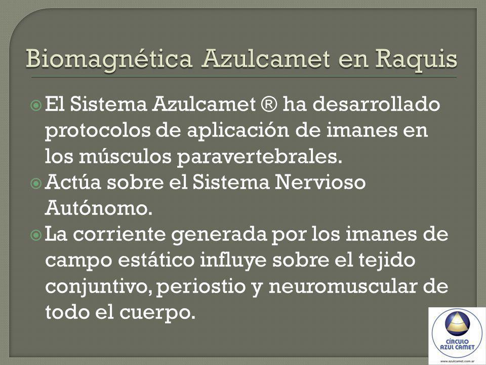 El Sistema Azulcamet ® ha desarrollado protocolos de aplicación de imanes en los músculos paravertebrales. Actúa sobre el Sistema Nervioso Autónomo. L