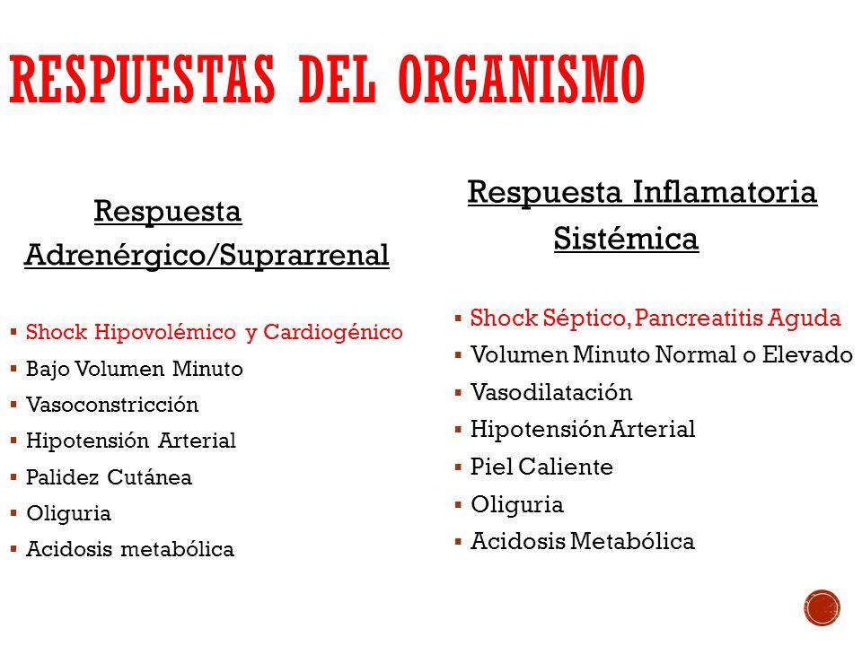 RESPUESTAS DEL ORGANISMO Respuesta Adrenérgico/Suprarrenal Shock Hipovolémico y Cardiogénico Bajo Volumen Minuto Vasoconstricción Hipotensión Arterial