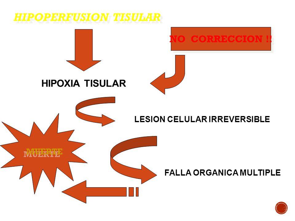 HIPOPERFUSION TISULAR HIPOXIA TISULAR LESION CELULAR IRREVERSIBLE FALLA ORGANICA MULTIPLE MUERTE NO CORRECCION !!