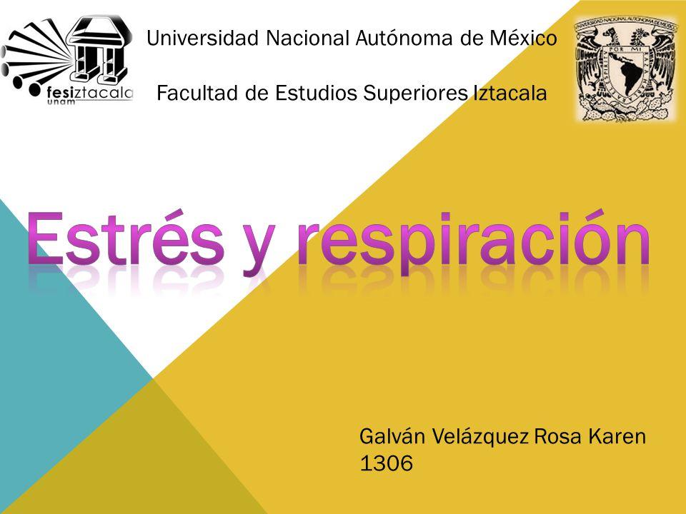 Universidad Nacional Autónoma de México Facultad de Estudios Superiores Iztacala Galván Velázquez Rosa Karen 1306