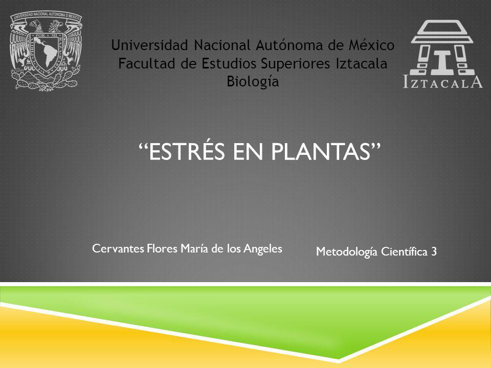 Universidad Nacional Autónoma de México Facultad de Estudios Superiores Iztacala Biología ESTRÉS EN PLANTAS Metodología Científica 3 Cervantes Flores