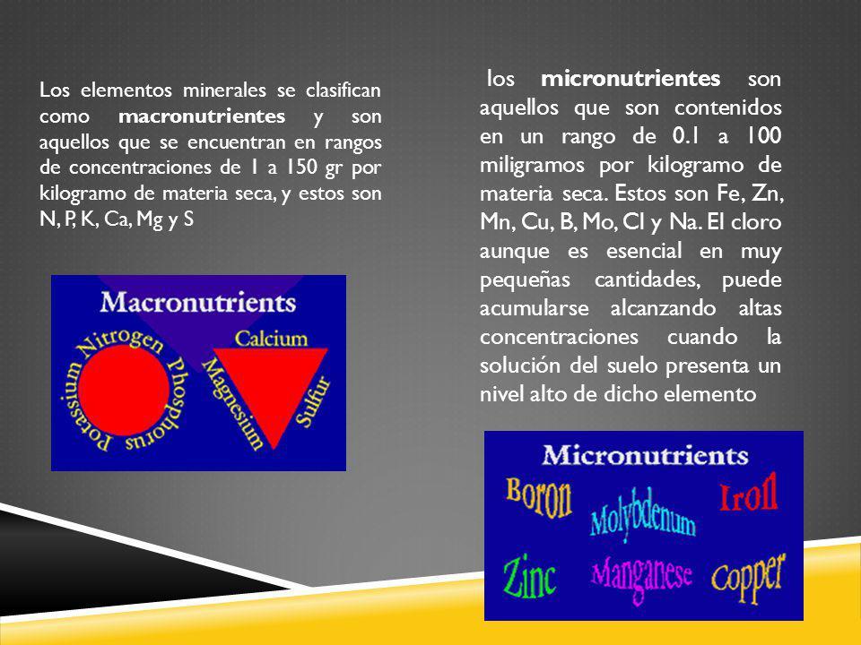 los micronutrientes son aquellos que son contenidos en un rango de 0.1 a 100 miligramos por kilogramo de materia seca. Estos son Fe, Zn, Mn, Cu, B, Mo