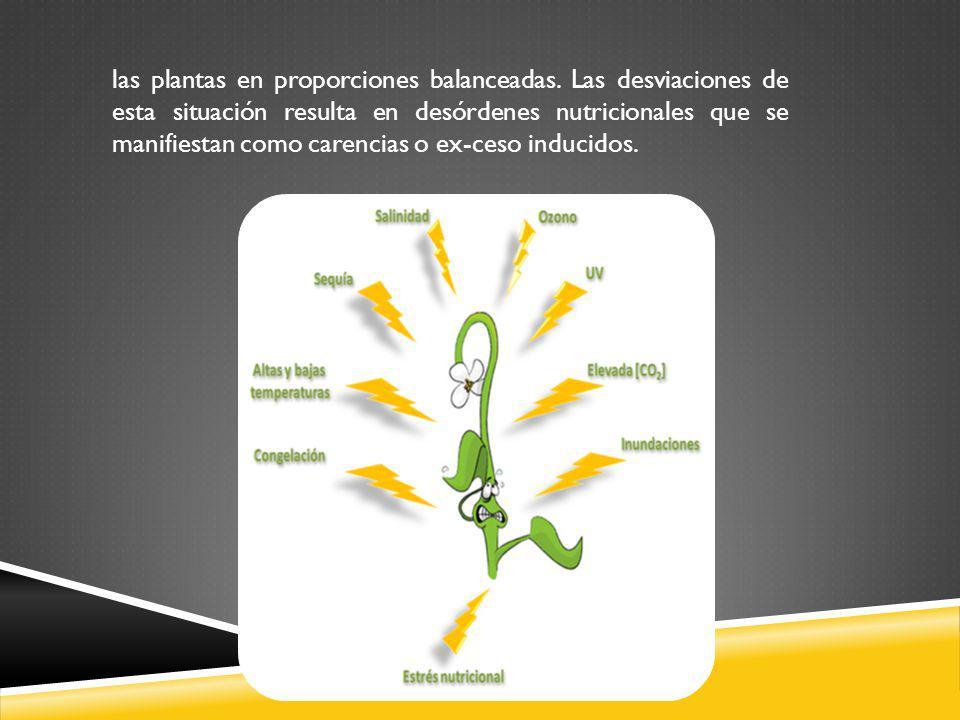 las plantas en proporciones balanceadas. Las desviaciones de esta situación resulta en desórdenes nutricionales que se manifiestan como carencias o ex