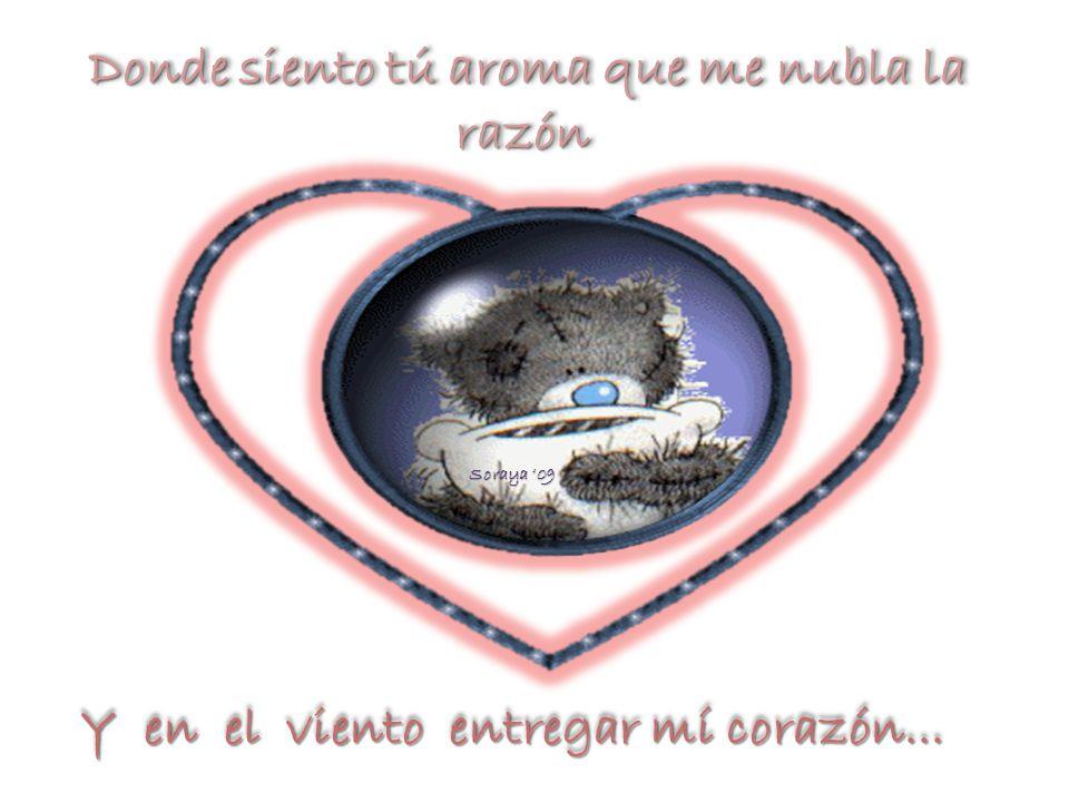 Donde siento tú aroma que me nubla la razón Donde siento tú aroma que me nubla la razón Soraya 09 Y en el viento entregar mí corazón... Y en el viento