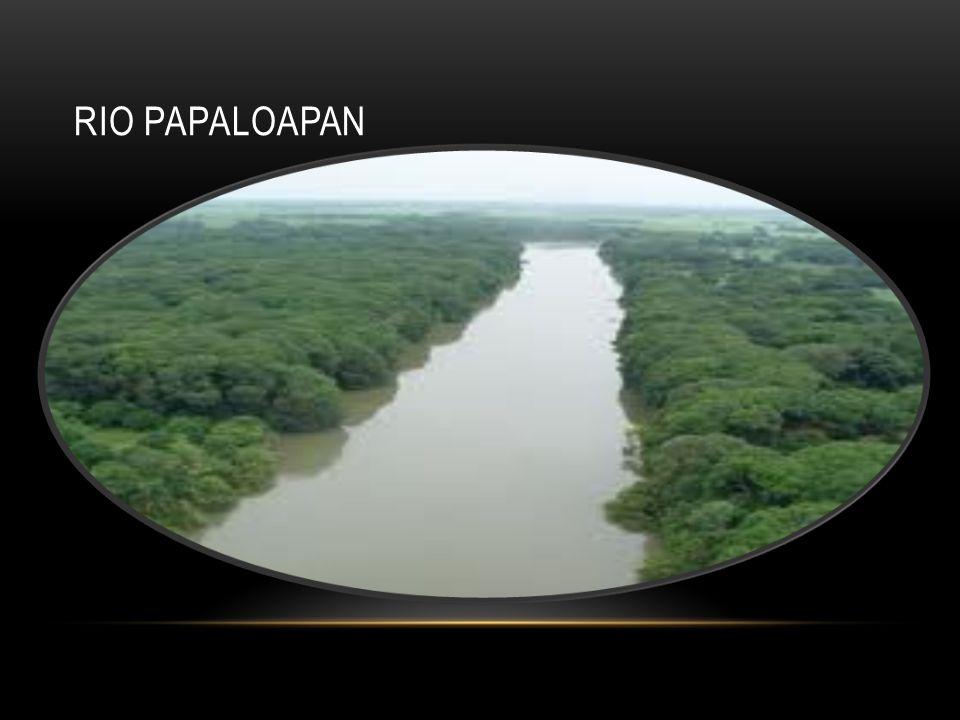 RIO PAPALOAPAN