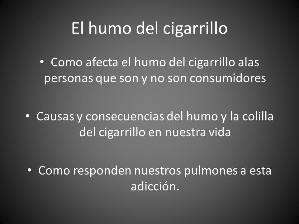 El humo del cigarrillo Como afecta el humo del cigarrillo alas personas que son y no son consumidores Causas y consecuencias del humo y la colilla del