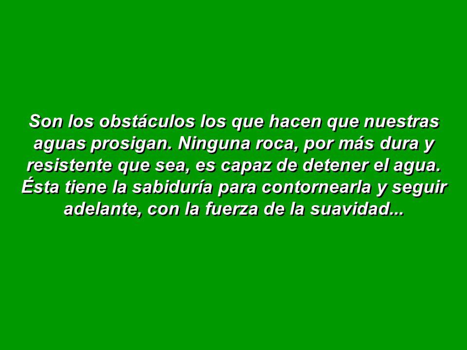 Son los obstáculos los que hacen que nuestras aguas prosigan.