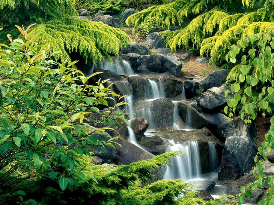 Son los obstáculos los que hacen que nuestras aguas prosigan. Ninguna roca, por más dura y resistente que sea, es capaz de detener el agua. Ésta tiene