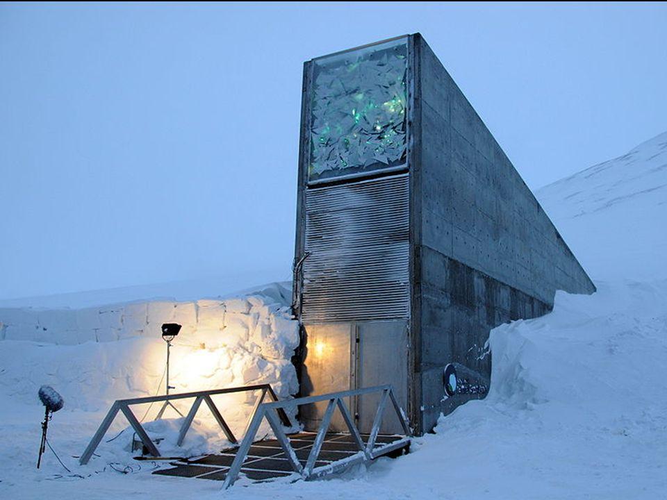 La Svalbard International Seed Vault (SISV), conocida también como la