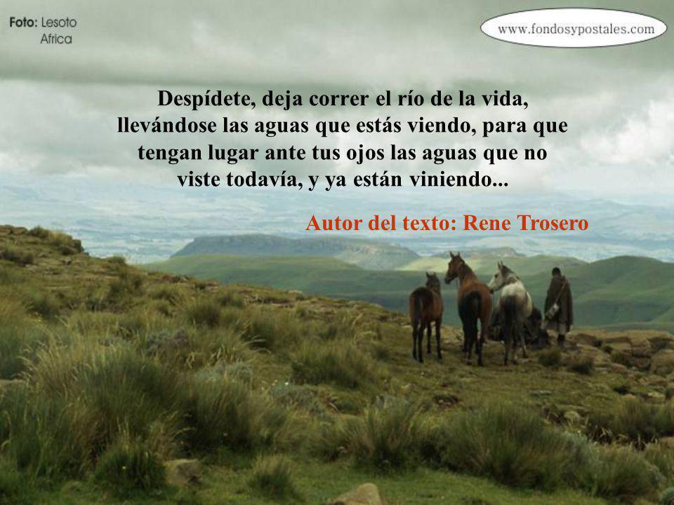 Despídete, de los que, muriéndose, partieron, para que dejes de esperar su regreso, y camines tu camino en la esperanza, de encontrarte tú con ellos...