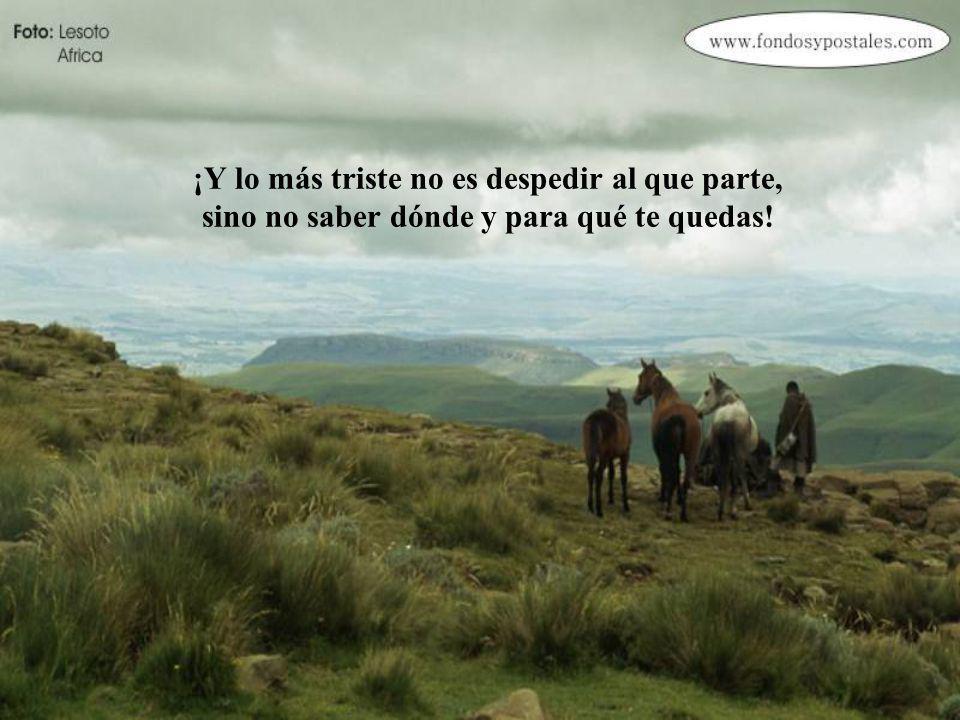 ¡Lo más triste no es despedirse, sino no saber hacia adónde ir...!