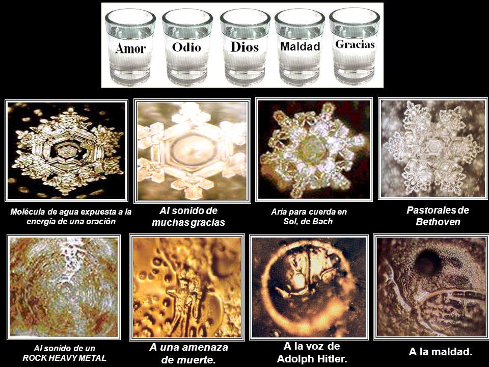 El investigador Masarú Emoto, ha podido captar en fotografías, estos movimientos en las partículas que conforman el agua sometiéndola a diferentes son