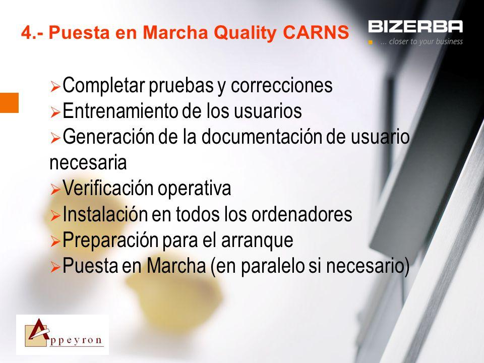 31.10.2000 4.- Puesta en Marcha Quality CARNS Completar pruebas y correcciones Entrenamiento de los usuarios Generación de la documentación de usuario