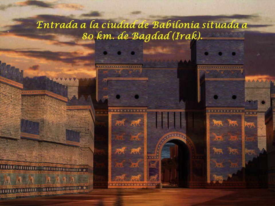 Ciudad de la región de Mesopotamia, con sus norias gigantes.