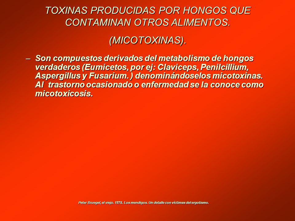 TOXINAS PRODUCIDAS POR HONGOS QUE CONTAMINAN OTROS ALIMENTOS.
