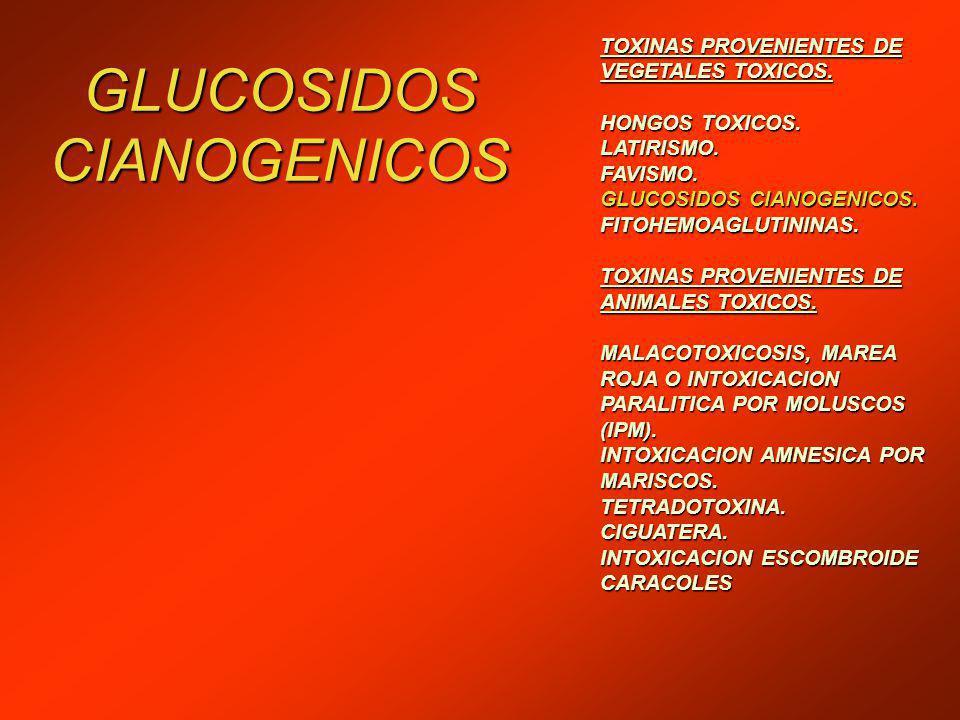 GLUCOSIDOS CIANOGENICOS TOXINAS PROVENIENTES DE VEGETALES TOXICOS.