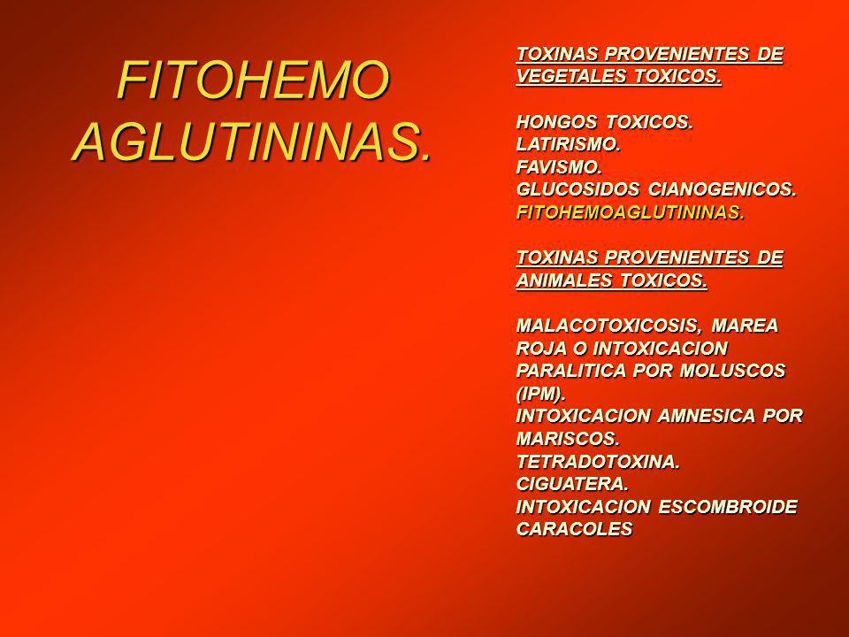 FITOHEMO AGLUTININAS.TOXINAS PROVENIENTES DE VEGETALES TOXICOS.