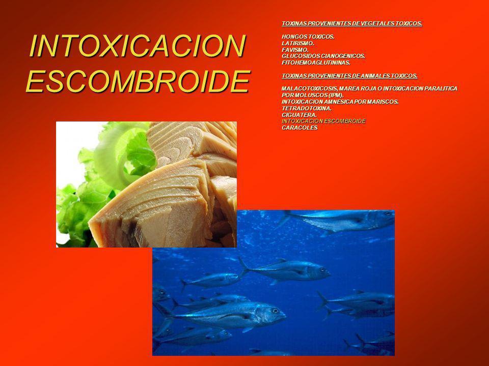 TOXINAS PROVENIENTES DE VEGETALES TOXICOS.HONGOS TOXICOS.