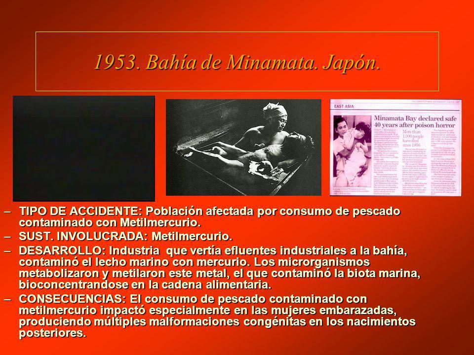 1953.Bahía de Minamata. Japón.