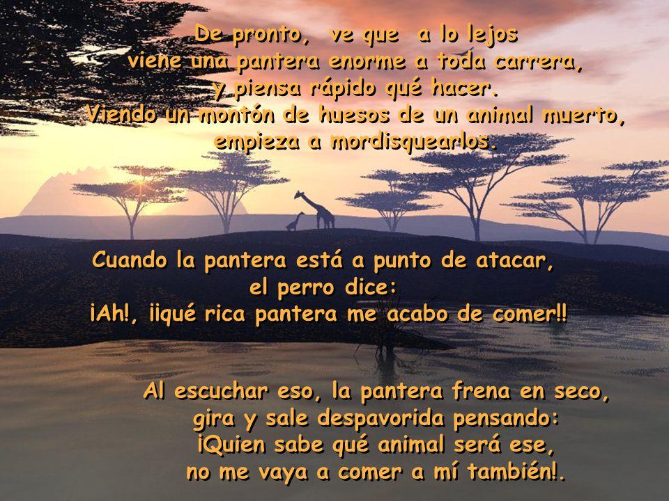 El perro, la pantera y el mono Un tío va con su perro de safari por África. En un momento dado, el perro sale correteando tras unas mariposas, tras un