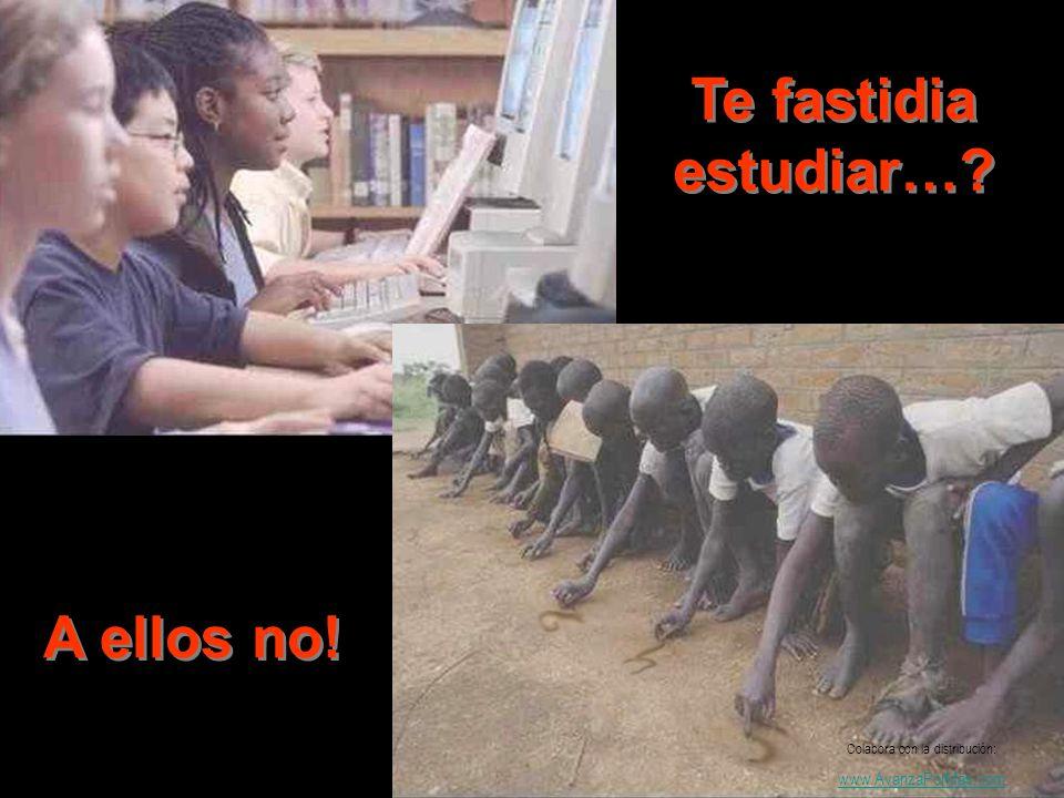 Te fastidia estudiar…? A ellos no! Colabora con la distribución: www.AvanzaPorMas.com