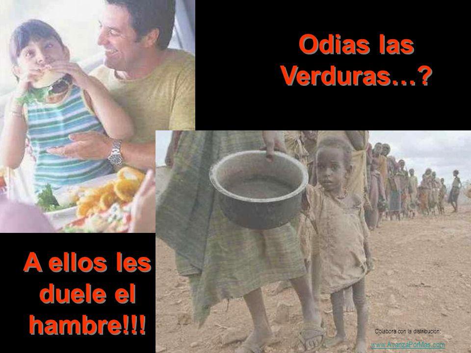 Odias las Verduras…? A ellos les duele el hambre!!! Colabora con la distribución: www.AvanzaPorMas.com