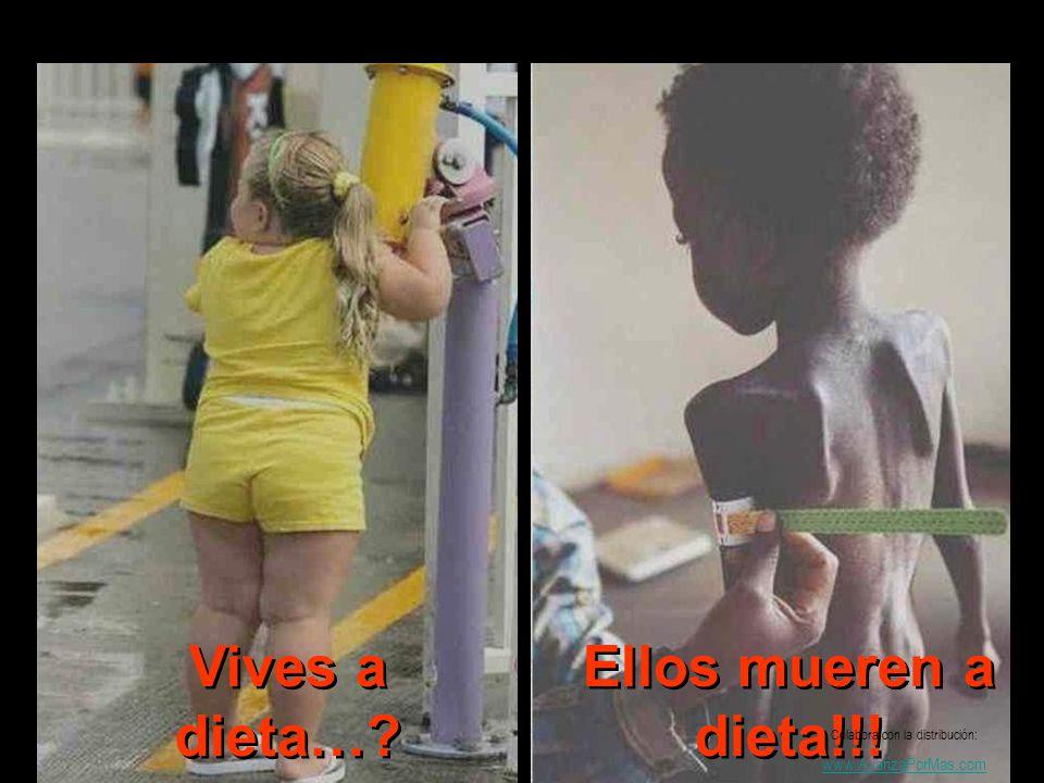 Vives a dieta…? Ellos mueren a dieta!!! Colabora con la distribución: www.AvanzaPorMas.com