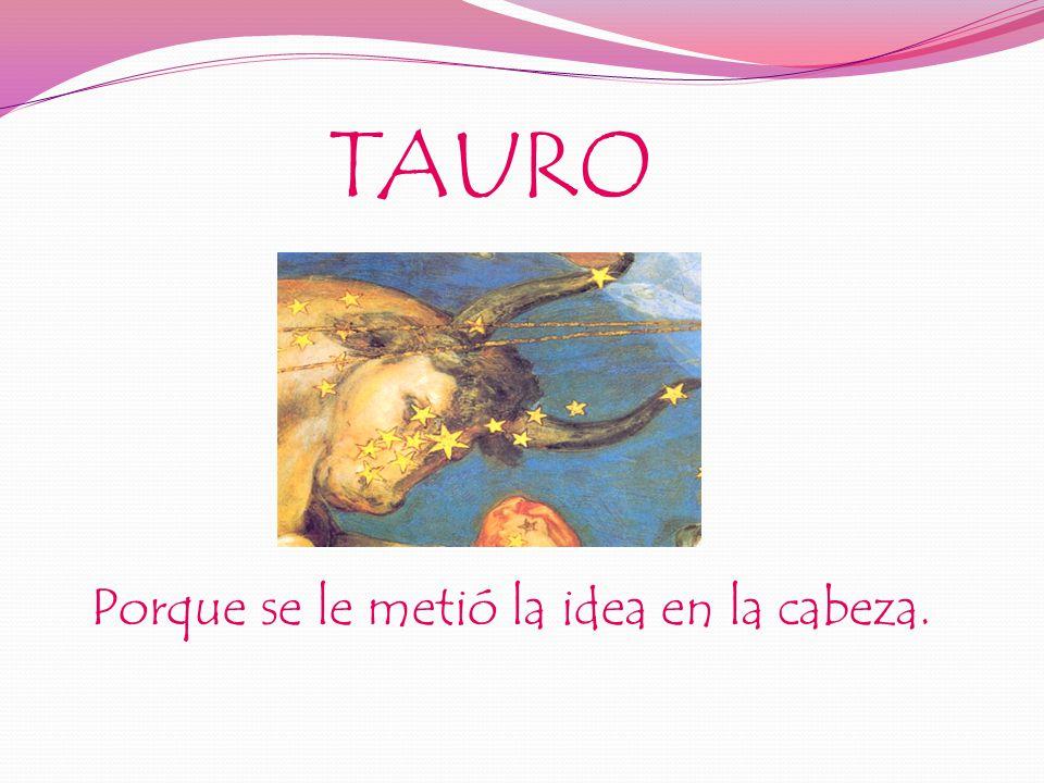 TAURO Porque se le metió la idea en la cabeza.