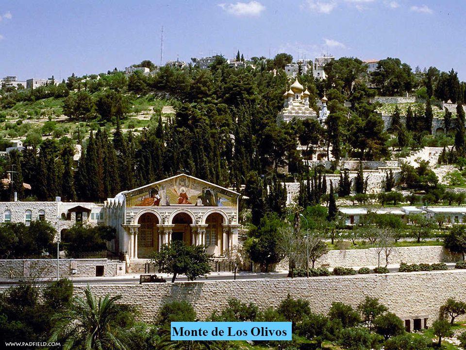 Ciudad antigua de Jerusalem desde el Monte de Los Olivos.