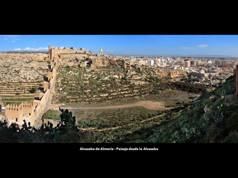 Alcazaba de Almería - Paisaje desde la Alcazaba