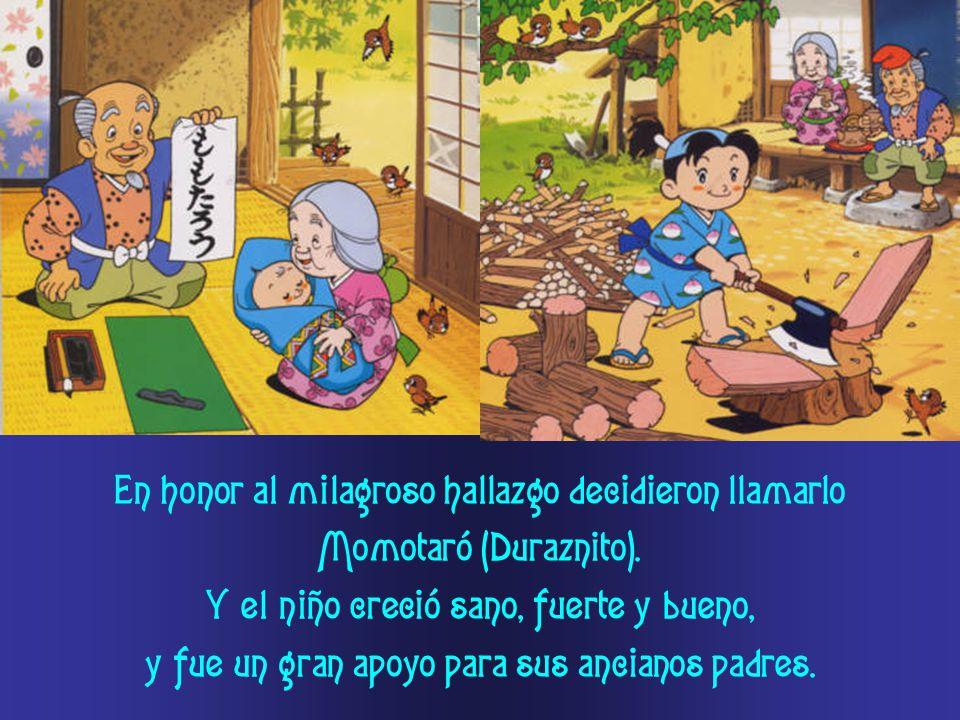 En honor al milagroso hallazgo decidieron llamarlo Momotaró (Duraznito). Y el niño creció sano, fuerte y bueno, y fue un gran apoyo para sus ancianos
