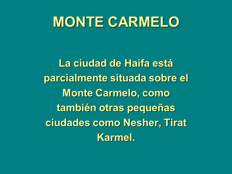 MONTE CARMELO La ciudad de Haifa está parcialmente situada sobre el Monte Carmelo, como también otras pequeñas ciudades como Nesher, Tirat Karmel.