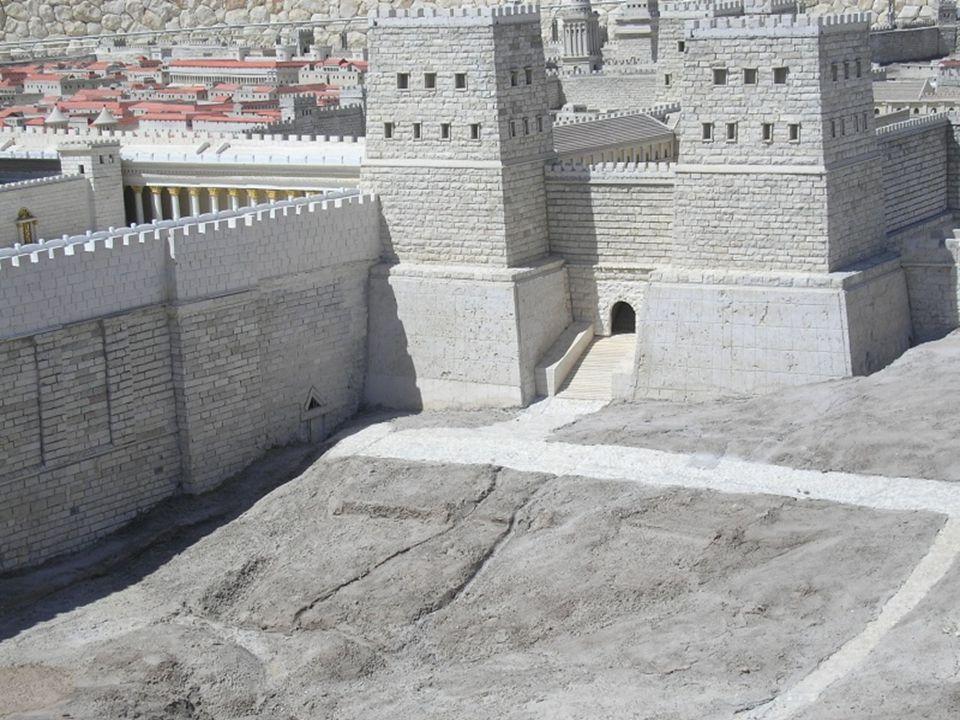 Fortaleza Antonia Vista de la Fortaleza y la puerta de Antonio.