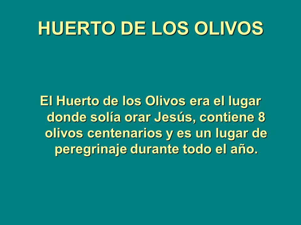 HUERTO DE LOS OLIVOS El Huerto de los Olivos era el lugar donde solía orar Jesús, contiene 8 olivos centenarios y es un lugar de peregrinaje durante todo el año.