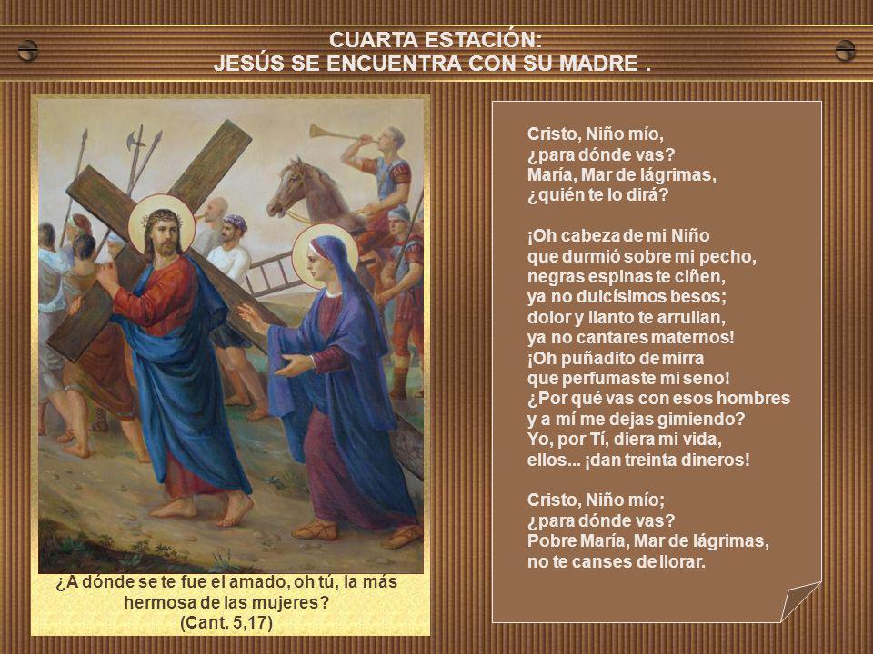 Cristo, Niño mío, ¿para dónde vas? María, Mar de lágrimas, ¿quién te lo dirá? Piececitos como lirios que en mi regazo crecieron, ¿por qué lleváis a mi