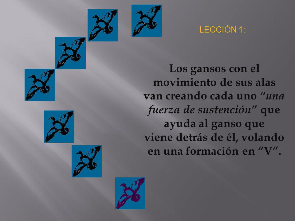 LECCIÓN 1: Los gansos con el movimiento de sus alas van creando cada uno una fuerza de sustención que ayuda al ganso que viene detrás de él, volando en una formación en V.