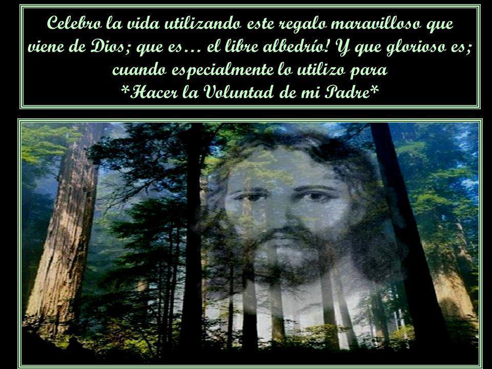 Celebro la vida, por esta Herramienta indiscutible, inmejorable, magnífica; necesaria y a tiempo justo, que es el Libro de Urantia, este espléndido re