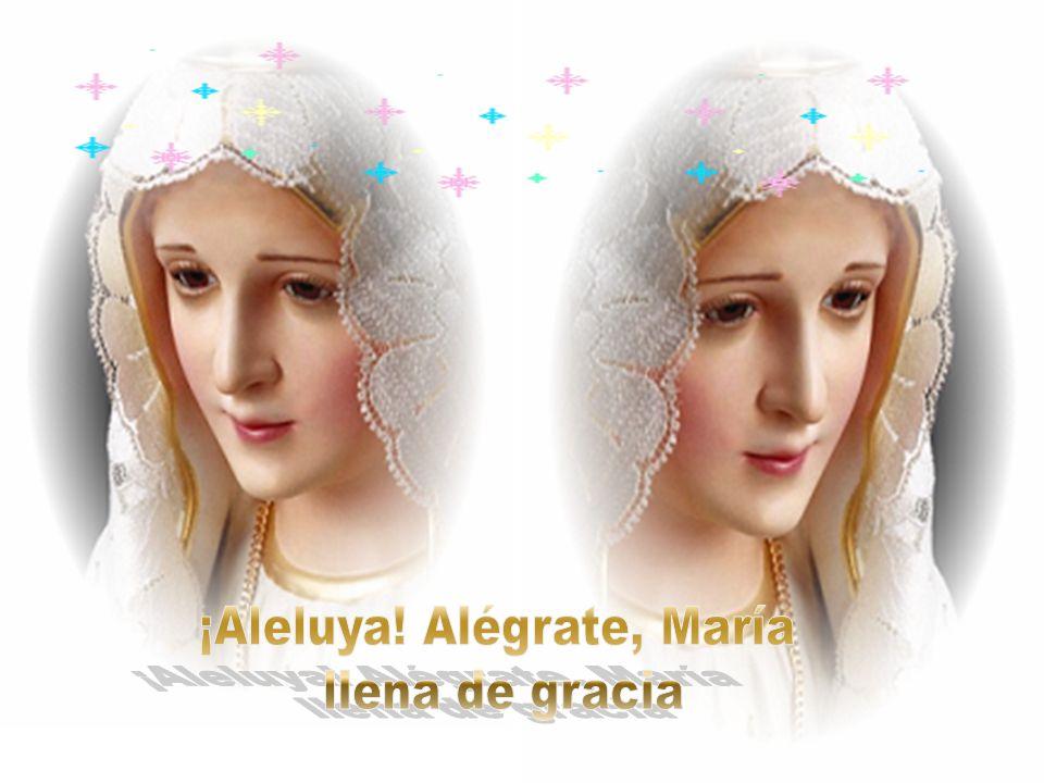 De la Iglesia naciente en su costado eres Madre en Amor y unción del cielo y pecho acogedor en desconsuelo cuando el hijo creyente esta cansado.