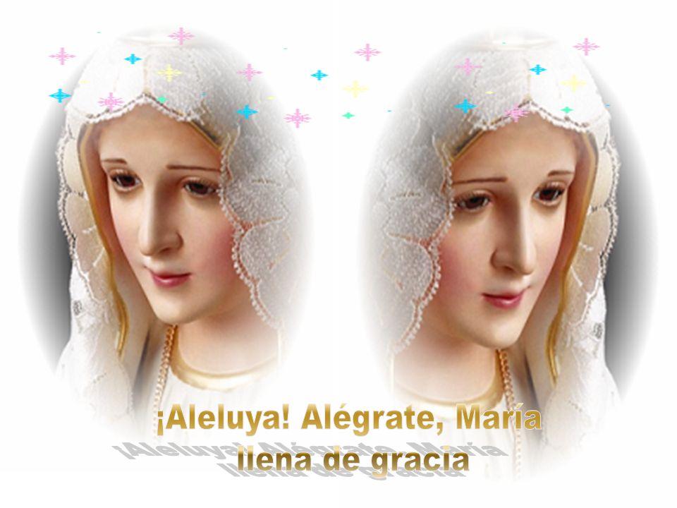 Desde el seno materno preparada para ser arca de la nueva vida aurora de la luz amanecida que en carne virginal es alumbrada.