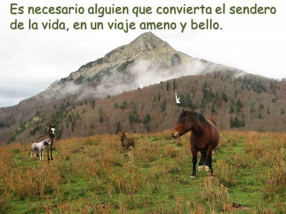 Es necesario alguien que convierta el sendero de la vida, en un viaje ameno y bello.