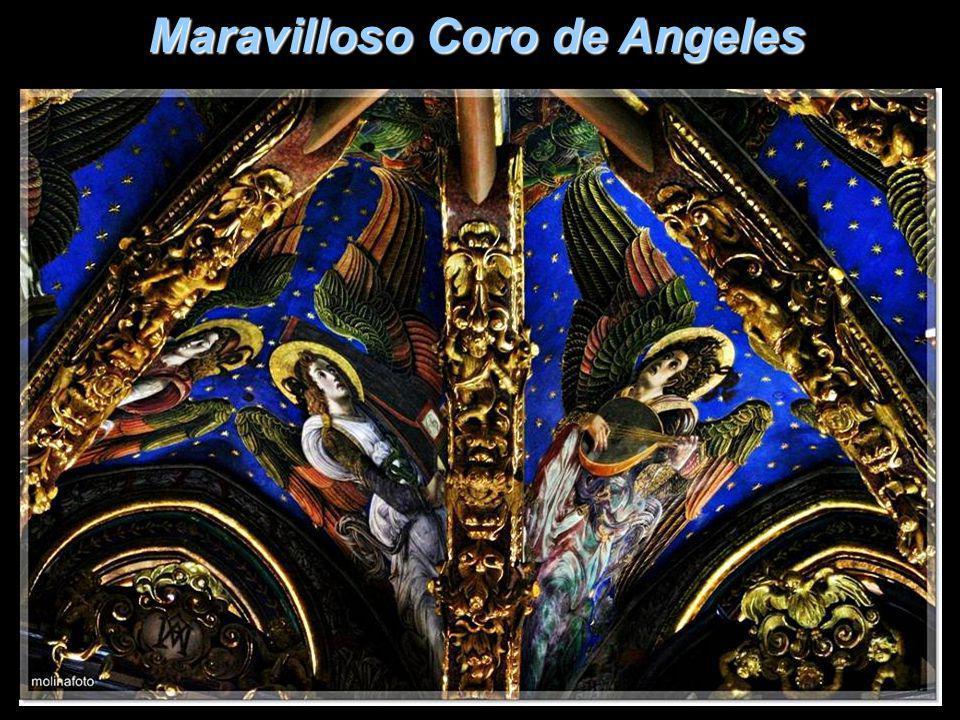 Maravilloso Coro de Angeles