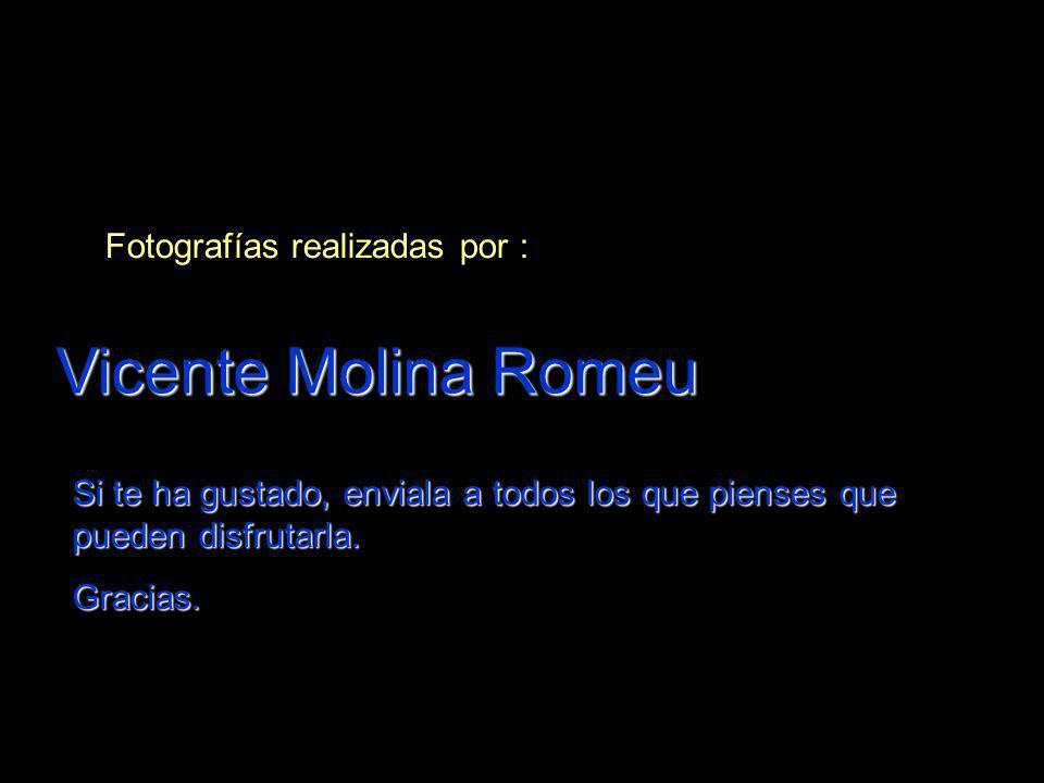 Fotografías realizadas por : Vicente Molina Romeu Si te ha gustado, enviala a todos los que pienses que pueden disfrutarla. Gracias.