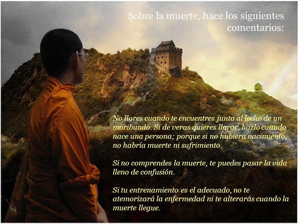 Para meditar no tienes que ir al santuario ni al monasterio. El mejor lugar para meditar es tu corazón. Te recomiendo que, cuando termines tu sesión,